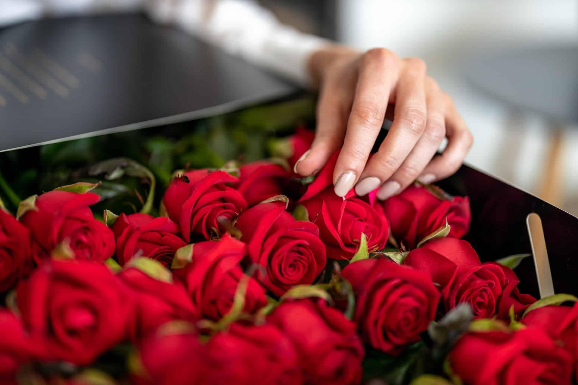 rozen in een bak.